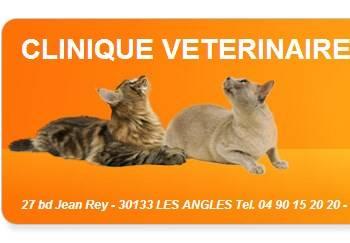 faire soigner son chien avignon clinique veterinaire de bellevue elevage de chiens et chats. Black Bedroom Furniture Sets. Home Design Ideas